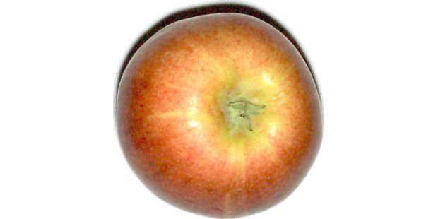 Schlagschatten inklusive: Apfel-Scan aus dem HP TopshotLaserjet Pro M275