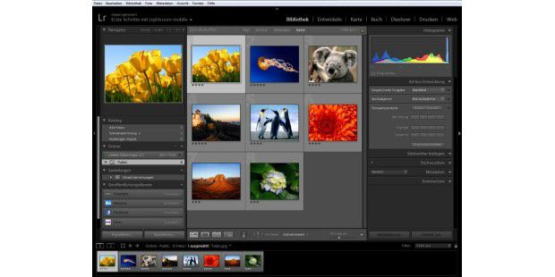 Adobe Potoshop Lightroom - kostenloser Download