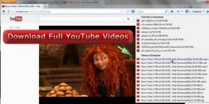 Browser Add-On: Download Flash and Video