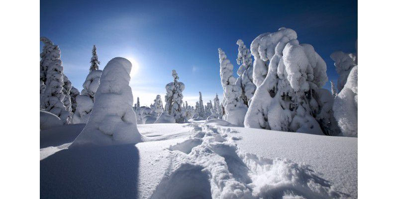 Winter Wallpaper Microsoft schicke Winter Wallpaper gratis von Microsoft Gratis Windows