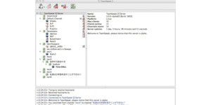 TeamSpeak Windows 64-Bit Server