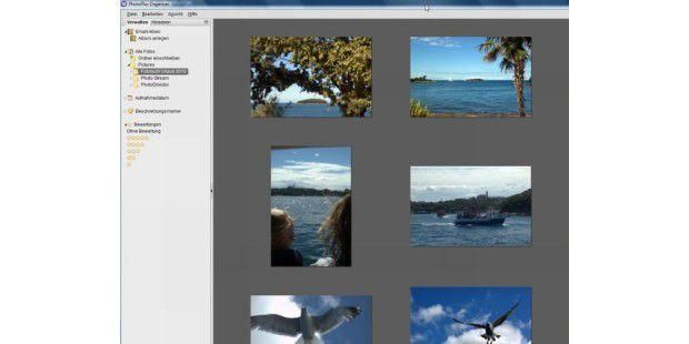 Photo Plus X5 bringt eine einfache, aber sehrübersichtliche Bildverwaltung mit, den Photo PlusOrganizer