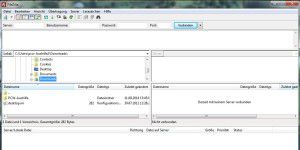 FileZilla (und Filezilla Server)