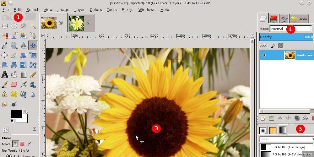 gimp download windows