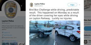 Bird Box Challenge: Teenager verursacht Autounfall