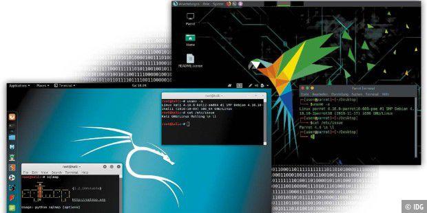 установить тор браузер kali linux gidra